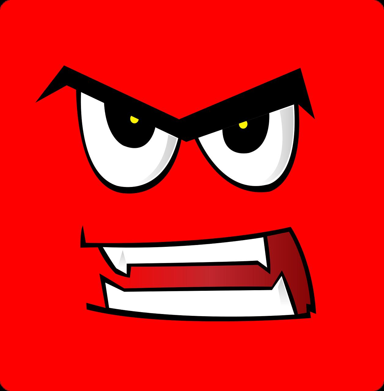 El enojo – opción y control